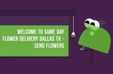 Same Day Flower Delivery Dallas TX – Send Flowers   (469) 518-5559
